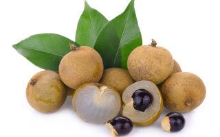 Лонган – где и как растёт этот фрукт, какой на вкус, полезные свойства