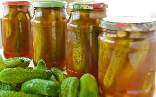 Огурцы с кетчупом чили маринованные на зиму: 2 рецепта на выбор