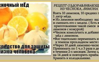 Настойка из чеснока, меда и лимона: почему ее называют волшебной, каков ее рецепт, а также каково применение для чистки сосудов в домашних условиях