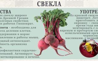 Полезные свойства для мужчин краснойсвеклы и ее вред для здоровья: как влияет корнеплод на организм, а также противопоказания по его употреблению
