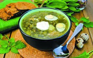 Зеленые щи (суп) с щавелем и крапивой