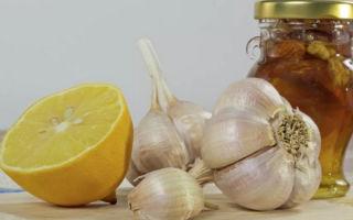 Настой чеснока на воде: как принимать с лимонами, имбирем и минералкой для похудения, а также другие полезные составы из зубчиков овоща