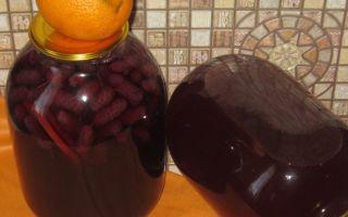 Мед с чесноком: польза и вред рецептов из этих компонентов, а также как приготовить смесии каково их применение в народной медицине для лечения болезней