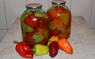 Заготовка болгарского перца на зиму для фарширования – рецепты