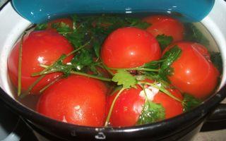 Салат из баклажанов запеченных: лучшие рецепты с фото