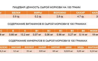 Морковь: калорийность на 100 грамм вареного и сырого корнеплода, сколько и какие витамины, бжу и пищевая или энергетическая ценность, а также химический состав