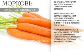 Какая морковь полезнее: вареная или сырая, их сравнение по влиянию на организм, подробное описание первой (польза и вред, слабит или крепит)