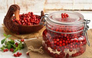 Как хранить бруснику в домашних условиях на зиму: заготовка с сахаром и без
