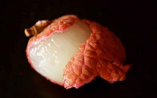 Маринованные шампиньоны быстрого приготовления и на зиму – рецепты с фото